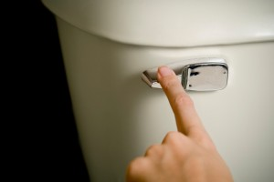 flush-toilet