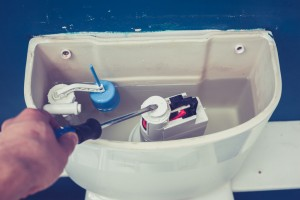 Plumbing maintenance tips new homeowner